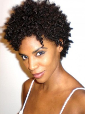 Fabulous Lace Front Curly Synthetic African American Wig