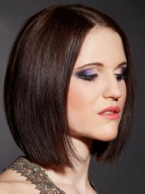 Elegant Synthetic Straight Lace Front Wig