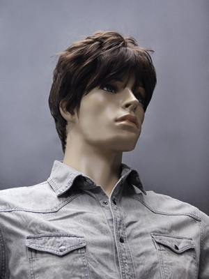Chic Short Straight Synthetic Mens Wig