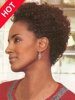 African American Short Curly Synthetic Wig