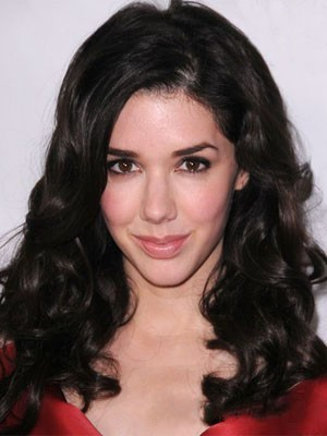 Graceful Synthetic Wavy Lace Front Wig